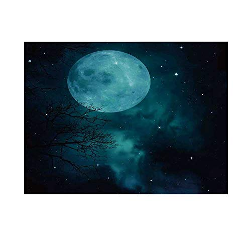 (Space Photography Background,Moon on Starry Sky Universe Cosmos Space Themed Mystical Twilight Celestial Scenery Backdrop for Studio,10x10ft)