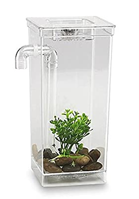 As Seen on TV 56028 My Fun Fish Tank