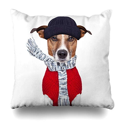 Ahawoso Throw Pillow Cover Weather Cold Winter Dog Scarf Hat Wool Funny Holidays Cool Christmas Snow Pet Sweater Design Home Decor Pillow Case Square Size 20x20 Inches Zippered Pillowcase