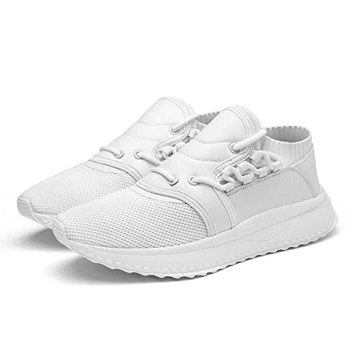 Men's Shoes Feifei Spring and Autumn Leisure Mesh Breathable Running Shoes 3 Colors (Color : White, Size : EU40/UK7/CN41)