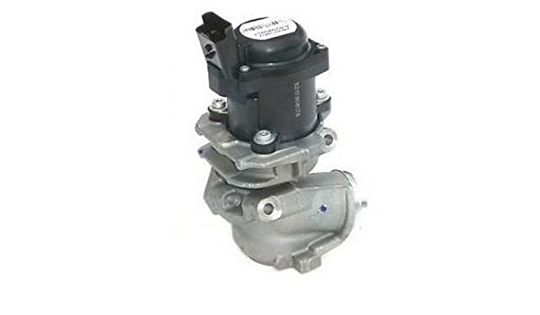 Bf-autoparts - Válvula EGR de recambio para motor 1.6 HDi, TDCi y D (Citröen, , , , y) : Amazon.es: Coche y moto
