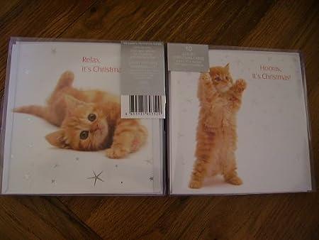 Christmas Hug Ginger Kitten Cat 10 cards twin pack luxury Xmas cards foil