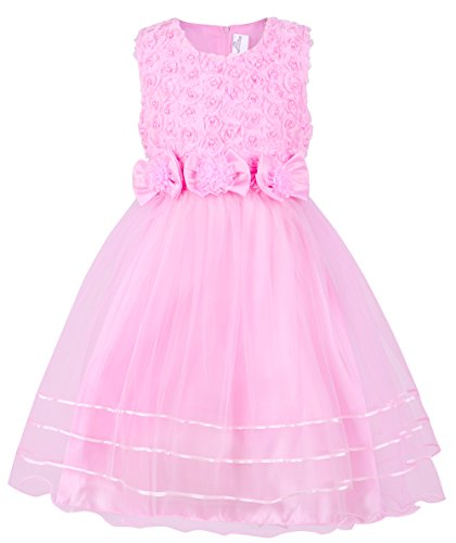 Mignongirl Girl Dress Pretty Flower Ruffles Dress Laces Gown Christmas Party Wedding Dress(0-8 Years) (Tag 80=US 13-24M, Pink) (Bridal Hang Tags)