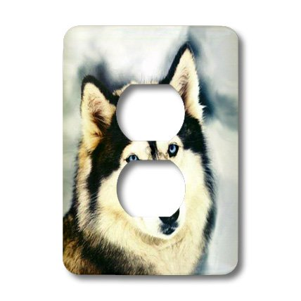 - lsp_517_6 Dogs Siberian Husky - Staring Siberian Husky - Light Switch Covers - 2 plug outlet cover