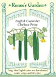 Cucumber - Chelsea Prize Seeds