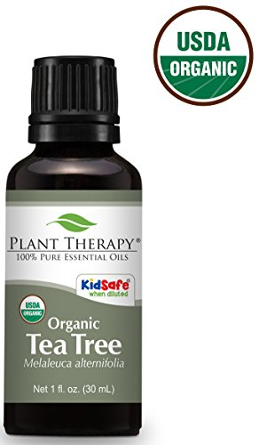 Plant Therapy USDA Certified Organic Tea Tree  Essential Oil