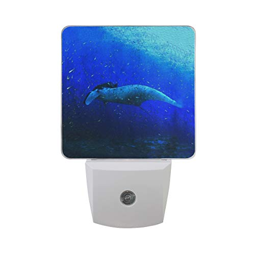 Night Light Manta Ray Led Light Lamp for Hallway, Kitchen, Bathroom, Bedroom, Stairs, Daylight White, Bedroom, Compact