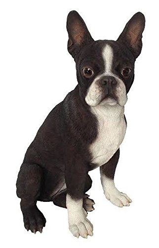 Hi-Line Gift Ltd. Dog - Boston Terrier Statue
