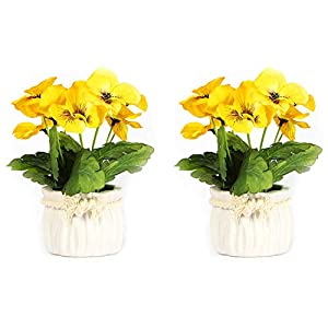 Serendipity Decorative Modern Artificial Potted Fake Succulent Plants for Decoration, Small, Yellow Pansy, Set of 2 44