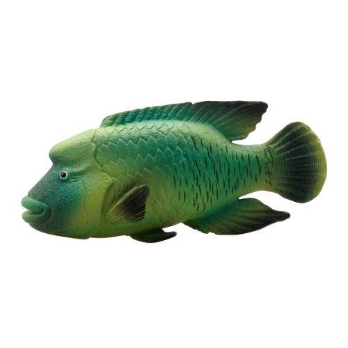 Humphead Wrasse Marine Life Toy Model