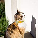 BINGPET Breakaway Cat Collar with Bell, 2 Pack