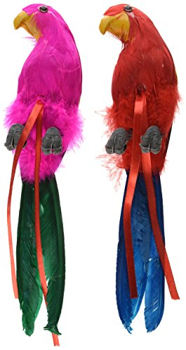 Beistle 50179-12 Feathered Parrots, 12-Inch (Parrot Decorations)