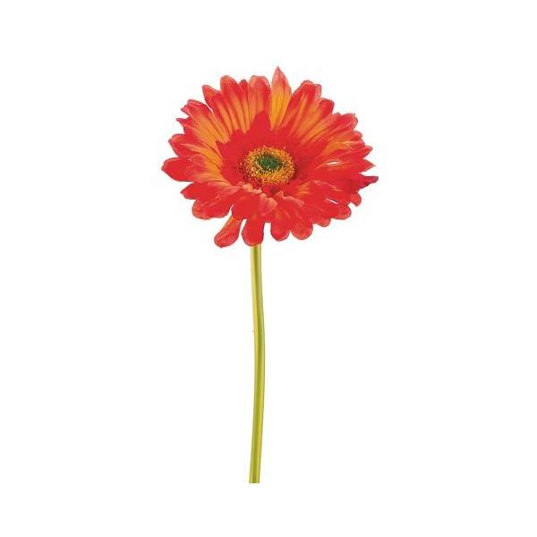 9″ Large Gerbera Daisy Stem Rust Orange (Pack of 24)