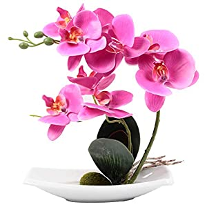 Homcomoda Artificial Phalaenopsis Orchid Bonsai Artificial Flowers Plants for Home Office Décor 6