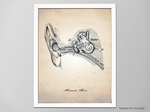 Black white sketch Tumblr room Medical one line art Doctor office decor Ear printable wall art Ear line drawing print