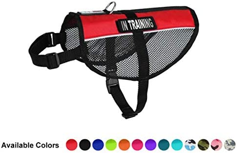 Dogline MaxAire Multi-Purpose Mesh Vest for Dogs and 2 Removable in Training Patches Small Red