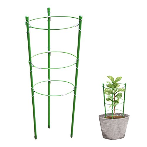 HsingsJ Plant Support Garden Support Rings Trellis Supporter for Climbing Plants (Peony Plant Support)