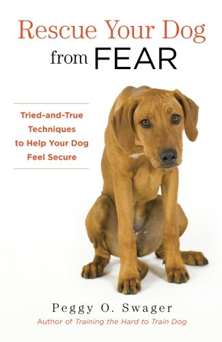 Rescue Your Fear Tried True product image