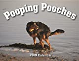 img - for 2019 Pooping Pooches White Elephant Gag Gift Calendar book / textbook / text book