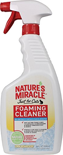 Natures Miracle Foaming Cleaner Orchard
