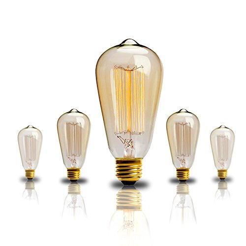 Edison bulb 60w Vintage Antique Incandescent Light Bulbs Dimmable Classic Home Light Fixtures Squirrel Cage Filament E26 E27 Base ST64 - 2 Pack