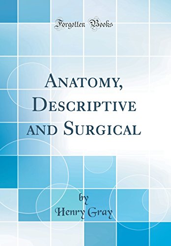 Anatomy, Descriptive and Surgical (Classic Reprint) (Anatomy Descriptive And Surgical By Henry Gray)