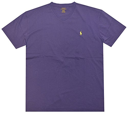Polo Ralph Lauren Men's Classic Fit V-Neck T-Shirt Cotton (Small, Purple (Green Pony))