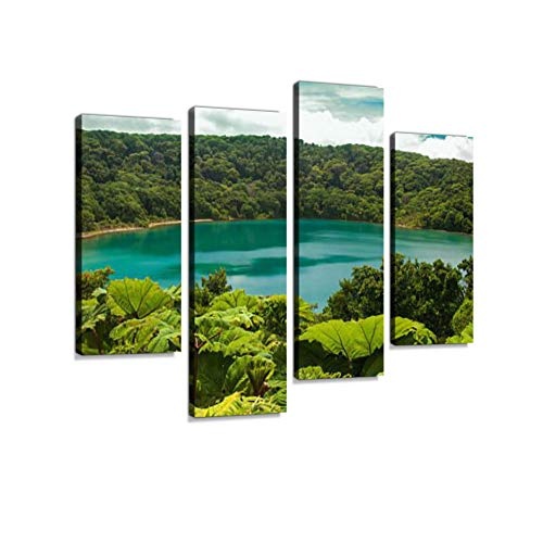 (Laguna Botos, Poas National Park of Costa Rica Canvas Wall Art Hanging Paintings Modern Artwork Abstract Picture Prints Home Decoration Gift Unique Designed Framed 4 Panel)