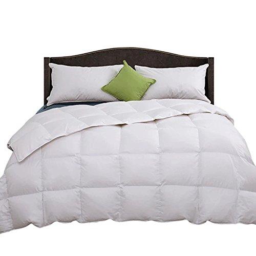 Natural 100% Organic Comforter - 3