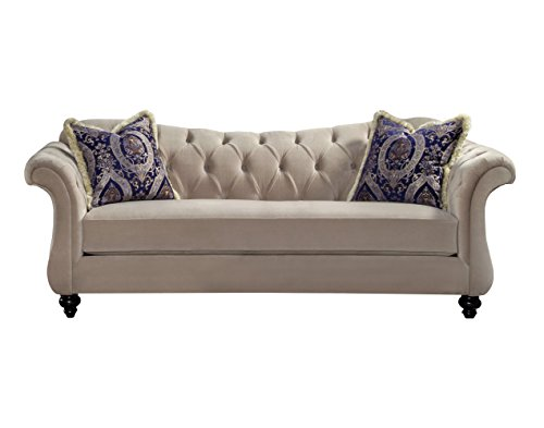Furniture of America Ivorah Glamorous Sofa, Light Mocha
