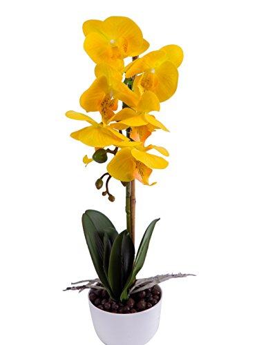 Phaleanopsis Arrangement Decorative Artificial Orchid