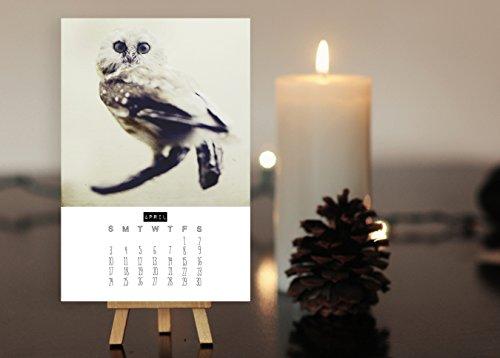 2016 Desk Calendar - Wonderful Creatures - Animal Art, Bird Art, Stocking Stuffer Mini Calendar