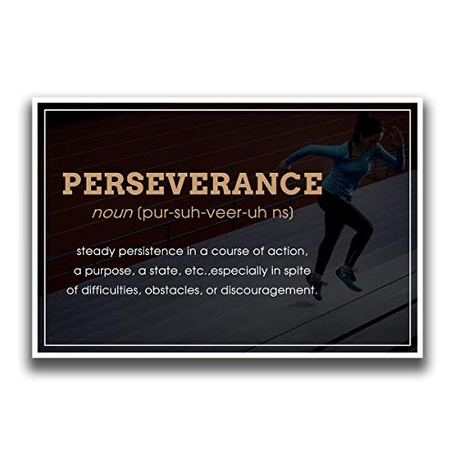 JSC522 Perseverance Motivational Inspirational Educational product image