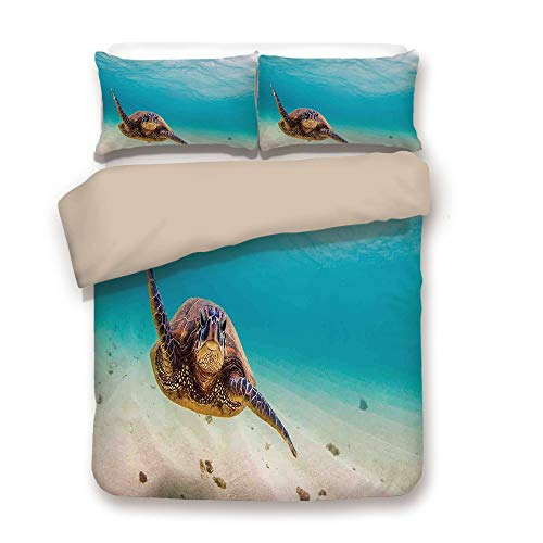 - Duvet Cover Set,Back of Khaki,Hawaiian,Underwater Scuba Diving Sea Turtle Nature Animal Swimming Wildlife Theme,Blue Beige Brown,Decorative 3 Pcs Bedding Set by 2 Pillow Shams,King