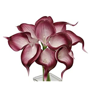 Angel Isabella, LLC 20pc Set of Keepsake Artificial Real Touch Calla Lily with Small Bloom Perfect for Making Bouquet, Boutonniere,Corsage (Burgundy Wine Trim) 10