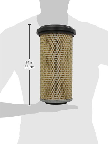 Mann Filter C15165 filtro de aire