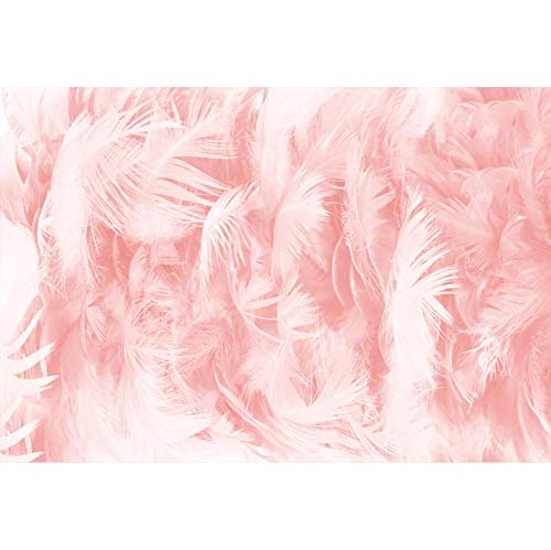 Leyiyi Pink Feather Backdrop 8x6ft Photography Background Dreamy Pink Valentine's Day Baby Shower Party Birthday Wedding Magazine Cover Blogger Vlogger Kids Adults Video Props -
