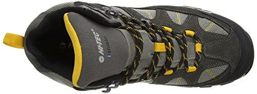Hi-Tec Altitude Lite I Wp - Zapatillas de senderismo Hombre Gris (Charcoal/Warm Grey/Gold 051)