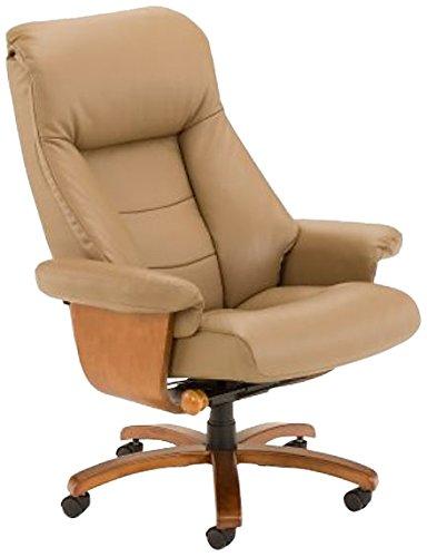 amazon com mac motion oslo mandal office desk chair recliner in