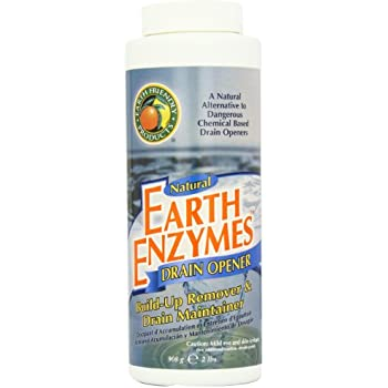 Amazon Com Earth Friendly Products Earth Enzymes Drain