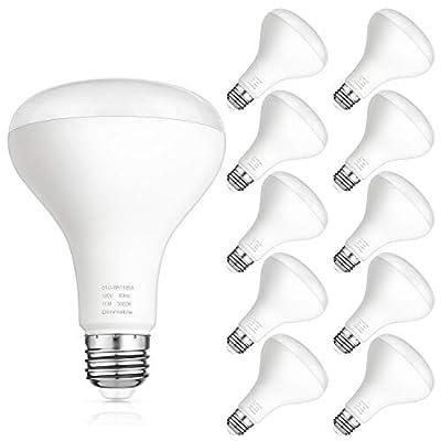 SHINE HAI BR30 LED Bulb Dimmable, 75 Watt Equivalent Flood Light Bulbs Indoor, 5000K Daylight White, 850lm, Medium Screw Base (E26), CRI80+, Pack of 10