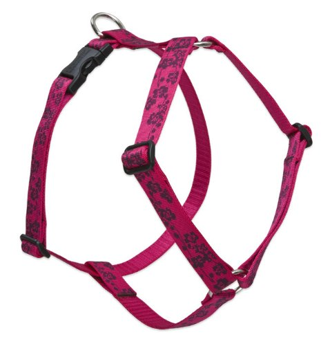 lupine dog harness 1 2 - 2