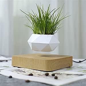 Levitating Bonsai Pot Rotation Flower Pot Planters Magnetic Levitation Suspension Floating Pot Potted Plant Home Desk Decor : White, AU Plug