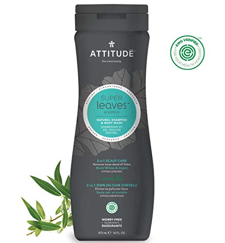 ATTITUDE Super Leaves, Hypoallergenic 2 in 1  Shampoo & Body Wash, Black Willow & Aspen, 16 Fluid Ounce