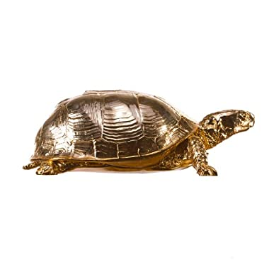 Areaware Box Turtle Box, Gold