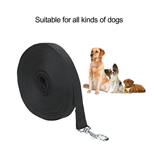 low-cost Vivifying Dog Training Lead Leash, 65ft/20m Long Nylon