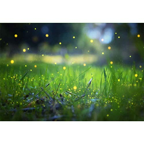 Laeacco 5x3ft Vinyl Fairy Tale Flying Firefly Grassland Fairylike Bokeh Backdrops St.Patrick's Day Photography Background Irish March Festival Photo Studio Event Party Banner Greeting Card Luck -