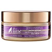 THE MANE CHOICE - Ancient Egyptian Anti-Breakage & Repair Antidote Hair Mask (8...