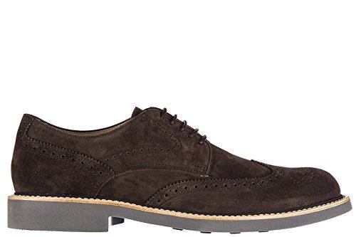 Tods Clásico Zapatos de Cordones EN Ante Hombres Nuevo Bucatura Fondo Light Der