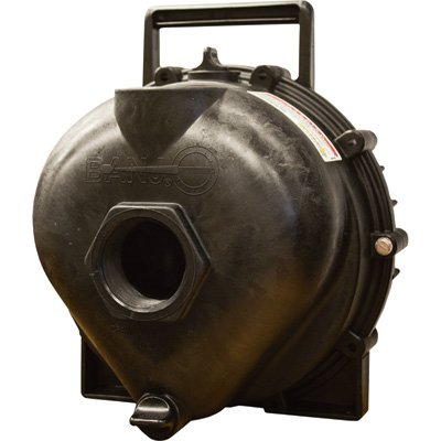 Banjo Replacement Pump - 2in. Ports, 11,700 GPH, Model# - Ban Model